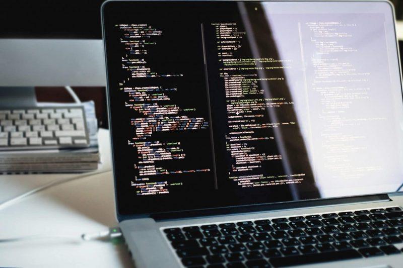 wordpress developer cost